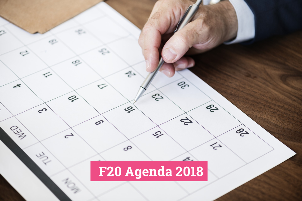 Agenda 2018 – F20 activities at G7, G20 and the COP24