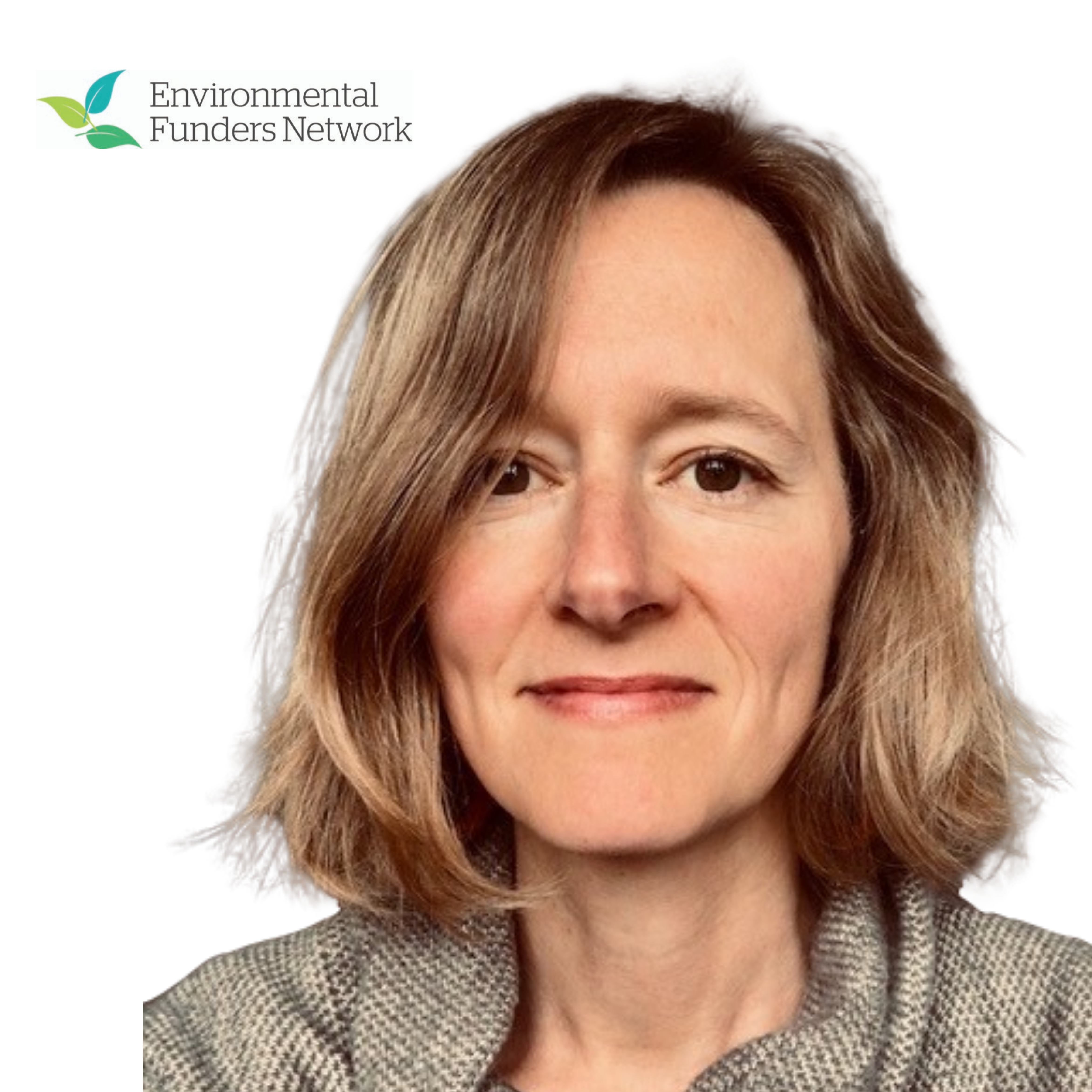 Making the most of Key Policy Moments: UK Environmental Funders at Work